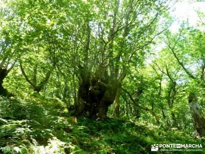 Sierra del Caurel:Courel; Lugo_Galicia; excursiones cerca madrid ruta pedriza viajes en verano